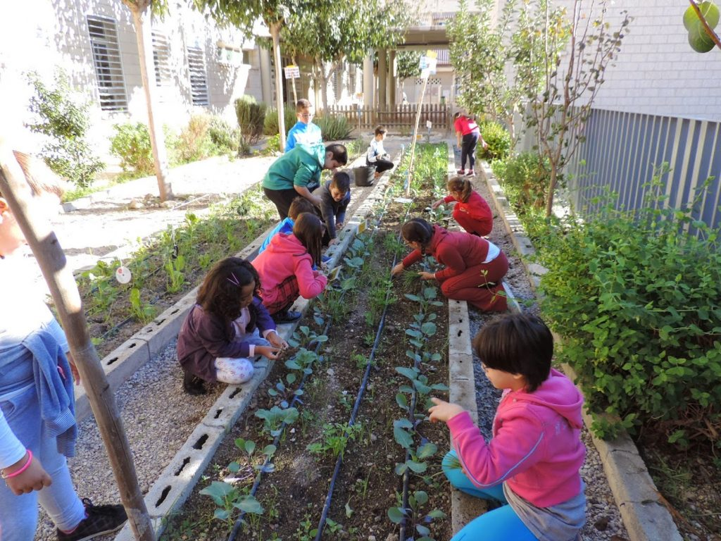 Alumnos del colegio Infanta Cristina de Puente Tocinos, ganador del I Premio Huertos Escolares Ecológicos.