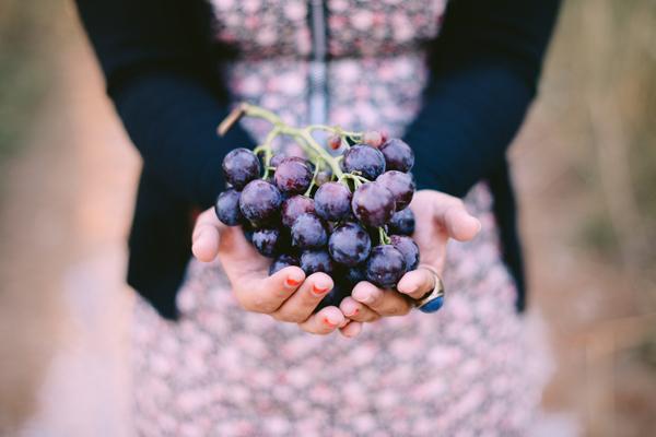 Sabor auténtico y más propiedades antioxidantes