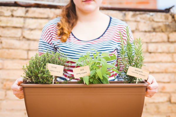 Plantar ecológico