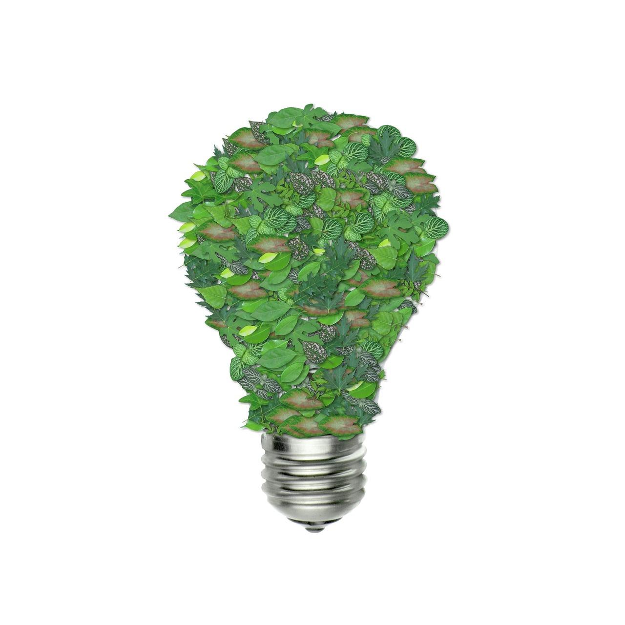 innovación-agroecología-premios-SEAE-Conocimiento-producción-ecológica