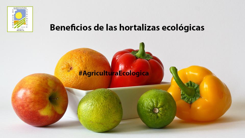 beneficios-hortalizas-ecológicas