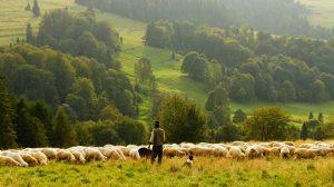 agricultura-ecológica-mundo-rural