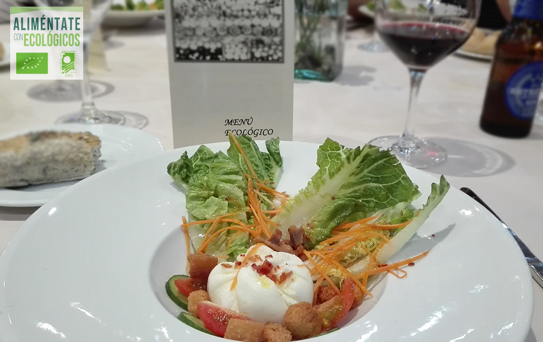 fstival de ensaladas ecológicas con huevo en flor y tocinico