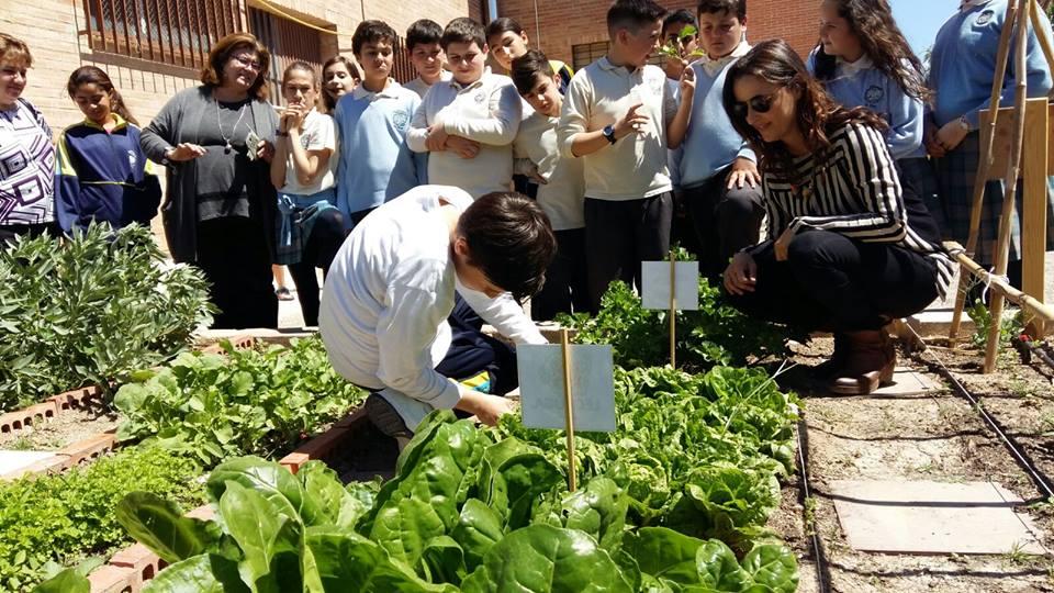 huertos ecológicos escolares